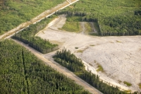 tar-sand;tar-sands;oil-sand;oil-sands;oil-industry;fossil-fuel;climate-change;global-warming;industry;heavy-industry;industrial;Athabasca;Alberta;Canada;destruction;strip-mining;Fort-McMurray;environment;environmental-destruction;carbon-footprint;Boreal-Forest;oil;bitumen;deposits;oil-reserves;mine;mining;carbon-footprint;tree;woodland;chop-down;clear-fell;deforestation;clear;strip-mining;destruction;carbon-sink;timber;square;squares;aerial;aerial-photograph