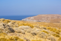 Lesvos;Lesbos;Greece;island;Aegean;dry;barren;drought;summer;vegetation;thorny;prickly;dried-up;hill;vegetation-type;habitat;sparce;hillside;west;rock;rocky