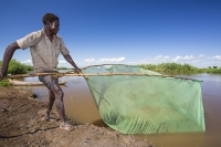fisherman;catching;fish;Shire-river;Nsanje;Malawi;net;fishing;poor;poverty;river;water;subsistence;netting;fishing-net