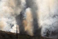 USA;US;America;California;drought;climate-change;global-warming;dried-up;wild-fire;bush-fire;King-Fire-El-Dorado-National-Forest;Georgetown;forest;tree;conifer;pine-tree;woodland;destroyed;destruction;black;blackened;smoke;smoking;burn;burning;burnt;devastation;air-pollution;air-quality;carbon;greenhouse-gas;particles;ash;habitat;consequence;sun;sunlight;aftermath