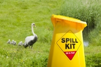Norfolk;UK;swan;Mute-Swan;cygnet;bird;oil;oiled;oil-spill;polluted;pollution;contamination;affected;global-warming;climate-change;wetland;plumage;yellow;plastic;bin;spill-kit;oil-spill;oil-spill-kit