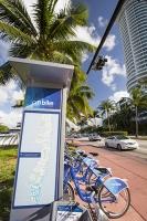 America;USA;Florida;Miami;coast;ocean;sea;Atlantic;Atlantic-Ocean;Miami-Beach;morning;light;real-estate;tower;tower-block;apartment;hotel;expensive;waterfront;vulnerable;sea-level-rise;man;palm-tree;Citi-bike;bike-hire;bike;bicycle