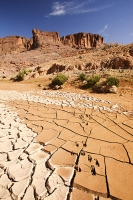 Morocco;Africa;North-Africa;Berber;Arabic;mountain;Anti-Atlas;countryside;desert;drought;dry;water;water-supply;water-shortage;food;food-security;climate-change;global-warming;rainfall;soil;field;food-crop;self-sufficiency;agriculture;dessicated;dried-up;rural;river;river-bed;mud;crakc;cracked;mud-cracks;dessication;dessication-cracks;pattern;footprint