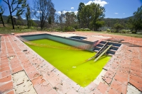 climate-change;global-warming;drought;Australia;Victoria;fire;catastrophic;bush-fire;forest-fire;wild-fires;poster;weather;Kinglake;disaster;natural-disaster;burnt;burn;destroyed;destruction;death;deaths;pool;swimming-pool;green;algae;stagnant