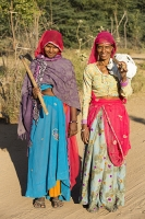 Tilonia;Rajasthan;India;feman;womale;face;portrait;purple;veil;Hindu;young;nose-stud;jewellry;axe;tool;wood;deforestation