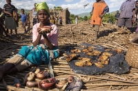 Malawi;Africa;Shire-Valley;woman;fishing;dried-fish;cat-fish;food