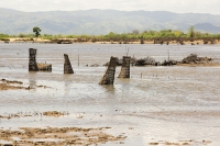 Malawi;Africa;flood;floods;flooding;African;disaster;climate-change;global-warming;Shire-Valley;net;trap;fishing;flood-waters;Bangula