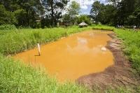 Malawi;Africa;Zomba;Zomba-plateau;pond;pool;carp-pond;fish-pond;brown;sediment;sustainable
