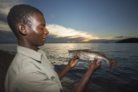 Malawi;Africa;Lake-Malawi;Cape-Maclear;sunlight;tropics;boat;tranquil;peaceful;water;blue;beach;sand;sandy;sandy-beach;fishing;man;male;fisherman;fish;catch;food;sunset;dusk