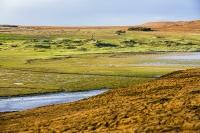 Assynt;North-West-Highlands;Scotland;headland;moorland;remote;isolated;house;croft;crofting;croft-house;Rubha-Coigeach;peak;orange;glow;glowing;Deer-grass;bog;peat-bog;cabon-sink;water;river;habitat;varied;saltmarsh;sand-dunes;green;grass;turf;salt-washed