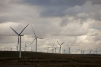Scotland;Lanarkshire;climate-change;global-warming;energy;power;renewable-energy;clean-energy;carbon-neutral;wind-power;wind-farm;wind-turbine;carbon-footprint;moorland;sky;blue;cloud;Whitelee;Whitelee-windfarm;Eaglesham;Eaglesham-moor;sustainable;sustainability;large;MW;megawatt;output;energy-needs;energy-production;electricity-production;rotor;turbine;nacelle;Scottish-Power;energy-company;investment;green-investment;light;sun;shade;grey
