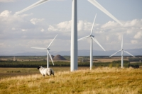 Black-Law;Black-Law-wind-farm;wind-farm;wind-turbine;wind-energy;renewable-energy;electricity;generation;moor;moorland;open-cast-coal-mine;large;turbine;climate-change;global-warming;sky;cloud;windy;wind;Scottish-Power;sheep;farming