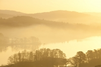 Ambleside;Lake-District;Cumbria;UK;national-park;water;lake;Windermere;Lake-Windermere;dawn;sunrise;morning;glow;orange;yellow;sky;cloud;tree;woodland;promontary;lake-shore;shoreline;Waterhead;Todd-Crag;Loughrigg;winter;misty;magical;ethereal;calm;tranquil;landscape;frost;frosty;cold;winter;freezing;mist;misty;fog;foggy