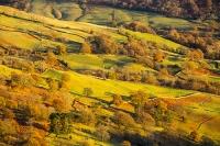Autumn-colours;housing;Ambleside;Lake-District;Cumbria;UK;view;vista;hill;season;Fall;hedge;yellow;Fall-colours;Fairfield;ridge;tree;woodland;Rydal;Rydal-Valley-wood;Ash-tree;light;glow;glowing;sunset;light;wall;drystone-wall;shade;bracken;brown;slope;field;field-boundary;pattern