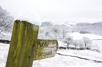 snow;winter;weather;hill;Lake-District;Cumbria;UK;snowfall;white;cold;freezing;snow-pack;slope;overcast;tree;woodland;branch;Langdale;valley;Skelwyth;fresh-air;fresh-snow;Langdale-Valley;river;River-Brathay;post;sign;footpath;public-footpath