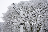 snow;winter;weather;hill;Lake-District;Cumbria;UK;snowfall;white;cold;freezing;snow-pack;slope;overcast;tree;woodland;branch;Langdale;valley;Skelwyth;fresh-air;fresh-snow;Langdale-Valley;Elterwater;car;road-sign;Langdale;pattern