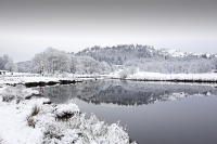snow;winter;weather;hill;Lake-District;Cumbria;UK;snowfall;white;cold;freezing;snow-pack;slope;overcast;tree;woodland;branch;Langdale;valley;Skelwyth;fresh-air;fresh-snow;Langdale-Valley;Elterwater;river;River-Brathay;reflection;still;walker;walking;person
