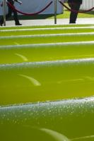 Algae-Link;algae;algae-production;pipe;production;green;water;harvest;harvesting;grwo;growth;growing;modern;science;efficient;climate-change;global-warming;ethanol;biodiesel;bio-diesel;productivity;carbon;carbon-neutral;carbon-footprint;solution;technology;technological;smart;photobioreactor;bioreactor