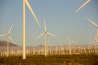 USA;US;America;California;Mojave-Desert;desert;electricity;generating;renewable;renewable-energy;wind-power;carbon-neutral;climate-change;global-warming;investment;clean-energy;technology;construction;green;green-energy;wind-turbine;wind-farm;truck;crane;Tehachapi-Pass;sun;dawn;sunrise;glow;warm;light;turning;rotating
