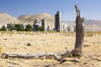USA;US;America;California;Mojave-Desert;desert;climate-change;global-warming;Tehachapi-Pass;cement;cement-works;factory;dirty;polluting;carbon-intensive;coal;power;energy;fossil-fuel;ranchland;farmland;dry;dessicated;dry;drought;killed;dead;tree;irony;ironic;cause-and-affect;cause-and-effect