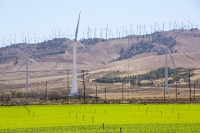 USA;US;America;California;Mojave-Desert;desert;electricity;generating;renewable;renewable-energy;wind-power;carbon-neutral;climate-change;global-warming;investment;clean-energy;technology;construction;green;green-energy;wind-turbine;wind-farm;Tehachapi-Pass;farm;farmland;crop;green;water;drought;irrigation;irrigation-water