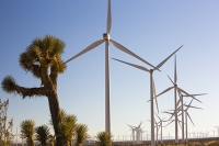 USA;US;America;California;Mojave-Desert;desert;electricity;generating;renewable;renewable-energy;wind-power;carbon-neutral;climate-change;global-warming;investment;clean-energy;technology;construction;green;green-energy;wind-turbine;wind-farm;truck;crane;Tehachapi-Pass;joshua-Tree