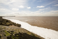 sewage;emptying;Yorkshire;UK;Hull;Humber-Estuary;estuary;pollution;water;waste;waste-water;disposal;water-quality;contamination;contaminated;sea;coast;coastal-pollution;tide;tidal;spill;spilling;foam;foaming;bubbles;chemical;docks;illegal;unethical;waste-spill;polluting;white;chemical-spill