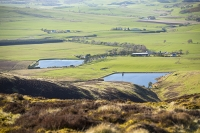 Southern-Uplands;Biggar;Scotland;UK;hill;moor;moorland;Spring;heather;vegetation;peat;carbon-sink;climate-change;carbon;sequestration;blanket-peat-bog;peat-bog;carbon-sink;carbon-store;Borders;farm;farmhouse;water;water-supply;drinking-water;reservoir;Tinto-Hill