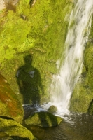 Stanah-Gill;Thirlmere;Lake-district;UK;Cumbria;water;waterfall;resource;gill;gully;ravine;rock;erosion;water-power;moss;green;clean;pure;fresh;cascade;hill;slope;steep;water-course;weather;wet;damp;vegetation;river;stream;environment;mossy;tumble;movement;gravity;man;male;exercise;fit;healthy;outdoors;peaceful;tranquil;relaxed;warm;summer;evening;sinlight;alone;contemplate;contemplation;nature;shadow;shade;outline;figure