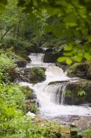 Glen-Lyn-Gorge;Lnymouth;gorge;water;water-power;river;stream;cascade;woodland;gorge