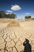 Victoria;Australia;climate-change;global-warming;drought;dry;dried-up;water-supply;water-levels;lake;reservoir;water-shortage;parched;dry;dessicated;mud;mud-cracks;dwindling;water-supply;water-security;farm;farming;agriculture;food-security;dried;dried-up;shadow;photographer