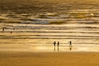 Polzeath;coast;sea;ocean;Cornwall;summer;sunset;glow;beach;sand;sandy;sandy-beach;North-Coast;Atlantic;Atlantic-ocean;person;sport;surfer;surfing;surf-board;wave