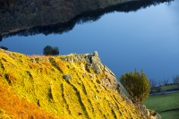Autumn-colours;Ambleside;Lake-District;Cumbria;UK;view;vista;hill;season;Fall;yellow;Fall-colours;Fairfield;ridge;tree;Rydal;Rydal-Valley;light;glow;glowing;sunset;light;shade;bracken;brown;slope;steep;Nab-Scar;terrace;terracing;soil-terrace;creep;creeping;slumping;lake;mere;Rydal-Water;Holly
