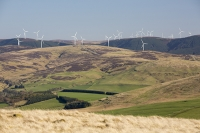 Southern-Uplands;Biggar;Scotland;UK;hill;moor;moorland;Spring;sky;blue;top;summit;heather;vegetation;peat;carbon-sink;climate-change;carbon;sequestration;blanket-peat-bog;peat-bog;carbon-sink;carbon-store;Borders;wind-turbine;wind-farm;renewable;renewable-energy;Tinto-Hill